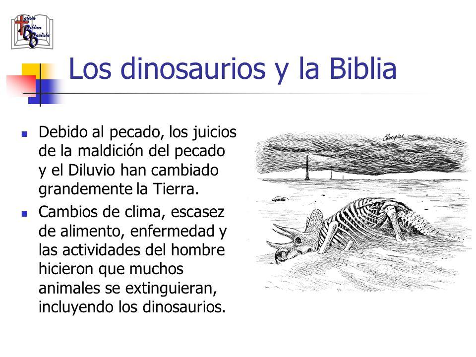 Los dinosaurios y la Biblia Debido al pecado, los juicios de la maldición del pecado y el Diluvio han cambiado grandemente la Tierra. Cambios de clima