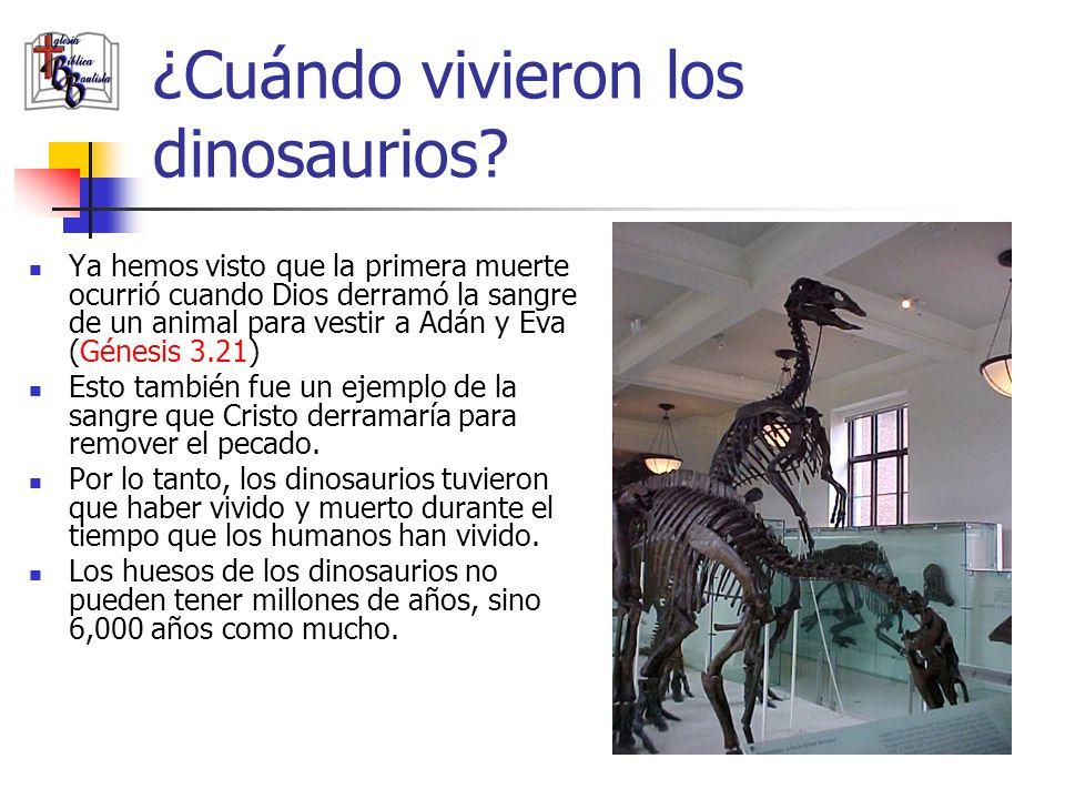 ¿Cuándo vivieron los dinosaurios? Ya hemos visto que la primera muerte ocurrió cuando Dios derramó la sangre de un animal para vestir a Adán y Eva (Gé