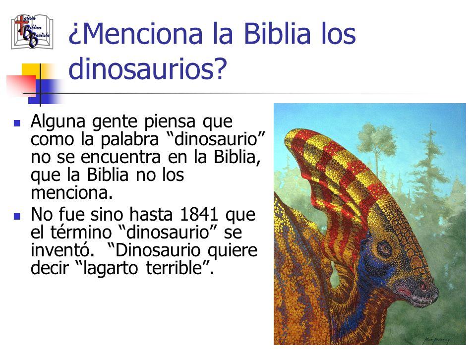 ¿Menciona la Biblia los dinosaurios? Alguna gente piensa que como la palabra dinosaurio no se encuentra en la Biblia, que la Biblia no los menciona. N