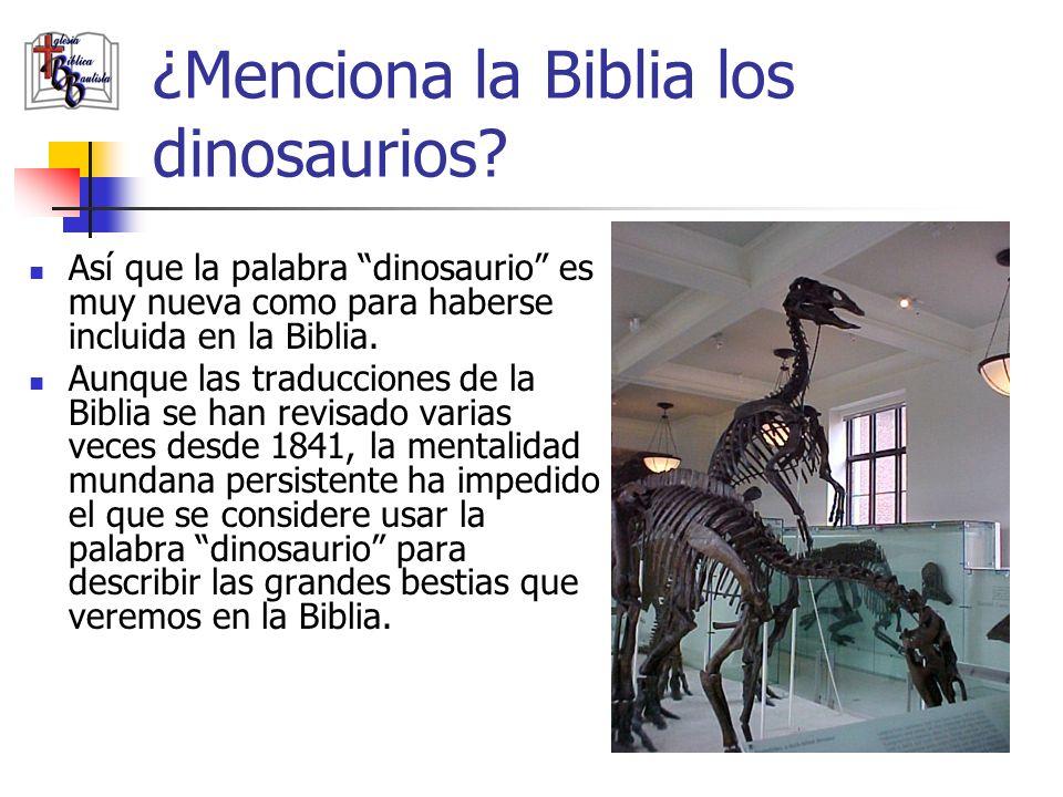 ¿Menciona la Biblia los dinosaurios? Así que la palabra dinosaurio es muy nueva como para haberse incluida en la Biblia. Aunque las traducciones de la
