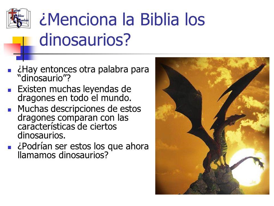 ¿Menciona la Biblia los dinosaurios? ¿Hay entonces otra palabra para dinosaurio? Existen muchas leyendas de dragones en todo el mundo. Muchas descripc
