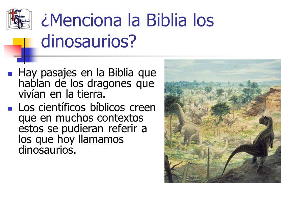 ¿Menciona la Biblia los dinosaurios? Hay pasajes en la Biblia que hablan de los dragones que vivían en la tierra. Los científicos bíblicos creen que e