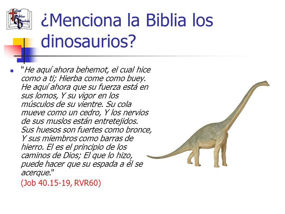 ¿Menciona la Biblia los dinosaurios?