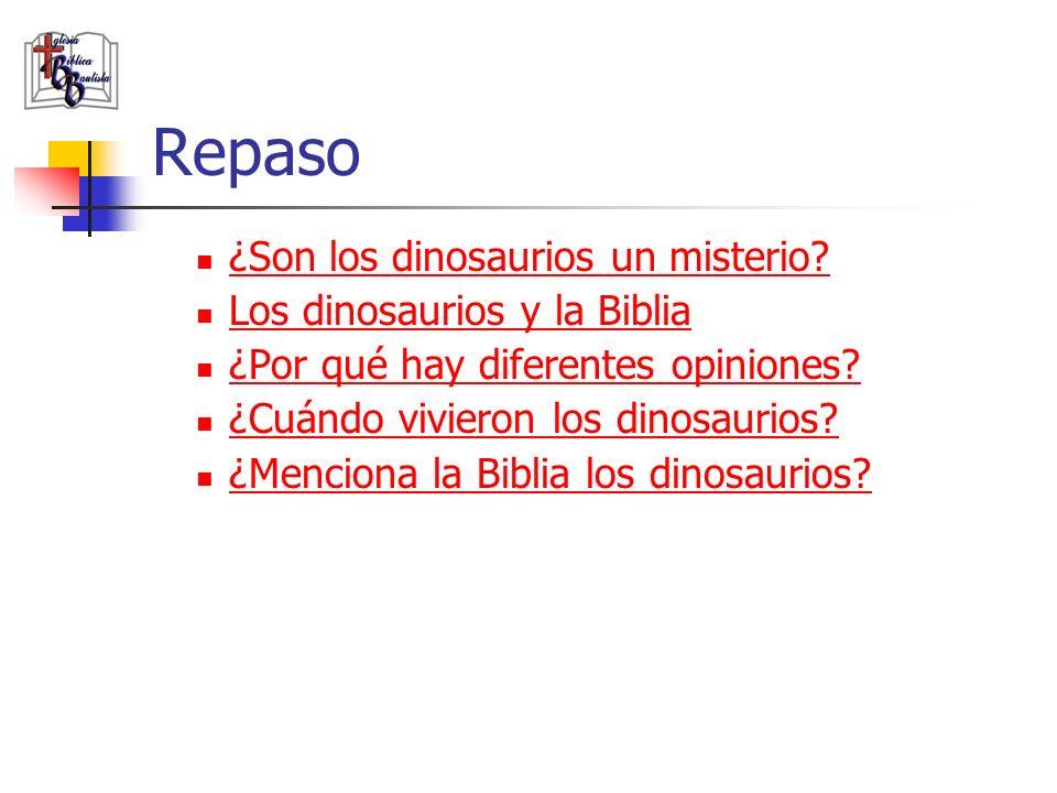 Repaso ¿Son los dinosaurios un misterio? Los dinosaurios y la Biblia ¿Por qué hay diferentes opiniones? ¿Cuándo vivieron los dinosaurios? ¿Menciona la
