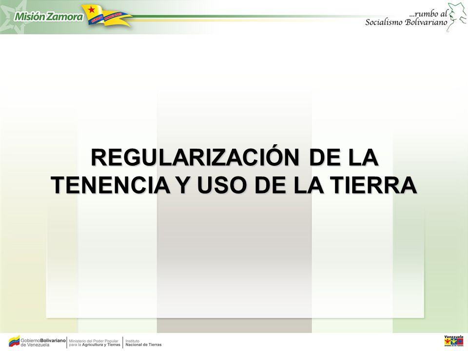 REGULARIZACIÓN DE LA TENENCIA Y USO DE LA TIERRA