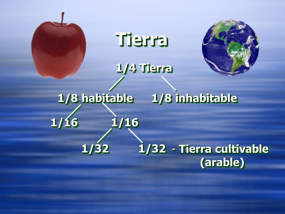 TierraTierra 1/4 Tierra 1/8 inhabitable 1/161/16 1/321/32 1/8 habitable 1/161/16 1/321/32 - Tierra cultivable (arable)
