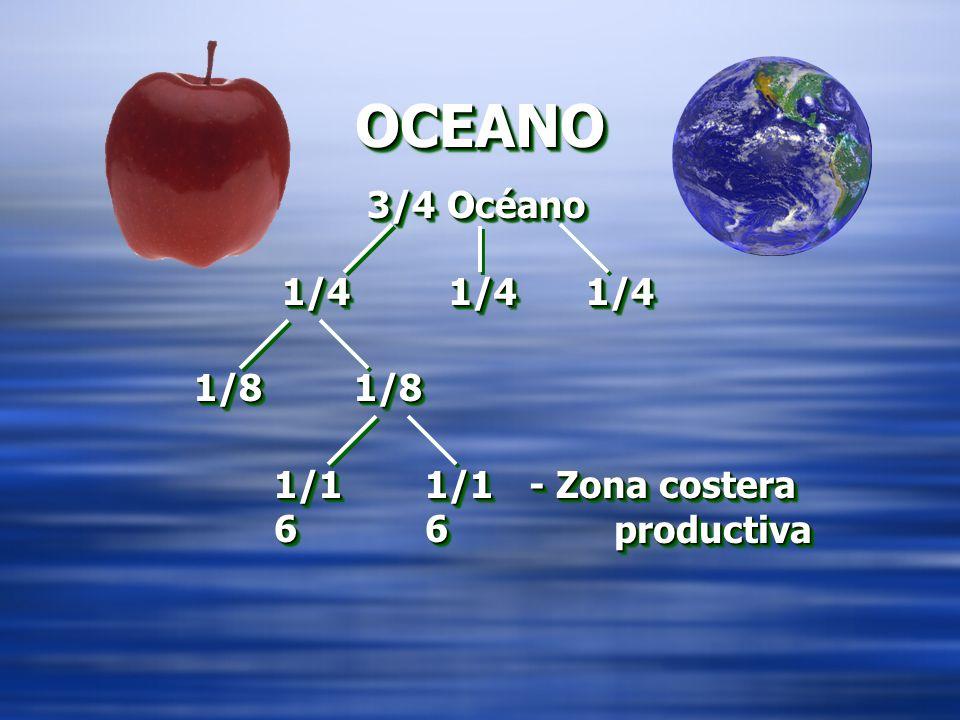 OCEANOOCEANO 3/4 Océano 1/41/4 1/81/8 1/1 6 1/41/4 1/81/8 - Zona costera productiva - Zona costera productiva 1/41/4