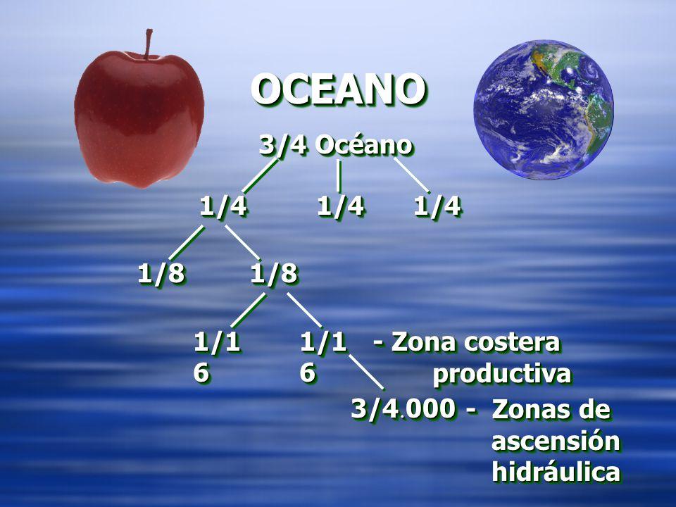 OCEANOOCEANO 3/4 Océano 1/41/4 1/81/8 1/1 6 3/4. 000 1/41/4 1/81/8 1/1 6 - Zona costera productiva - Zona costera productiva - Zonas de ascensión hidr
