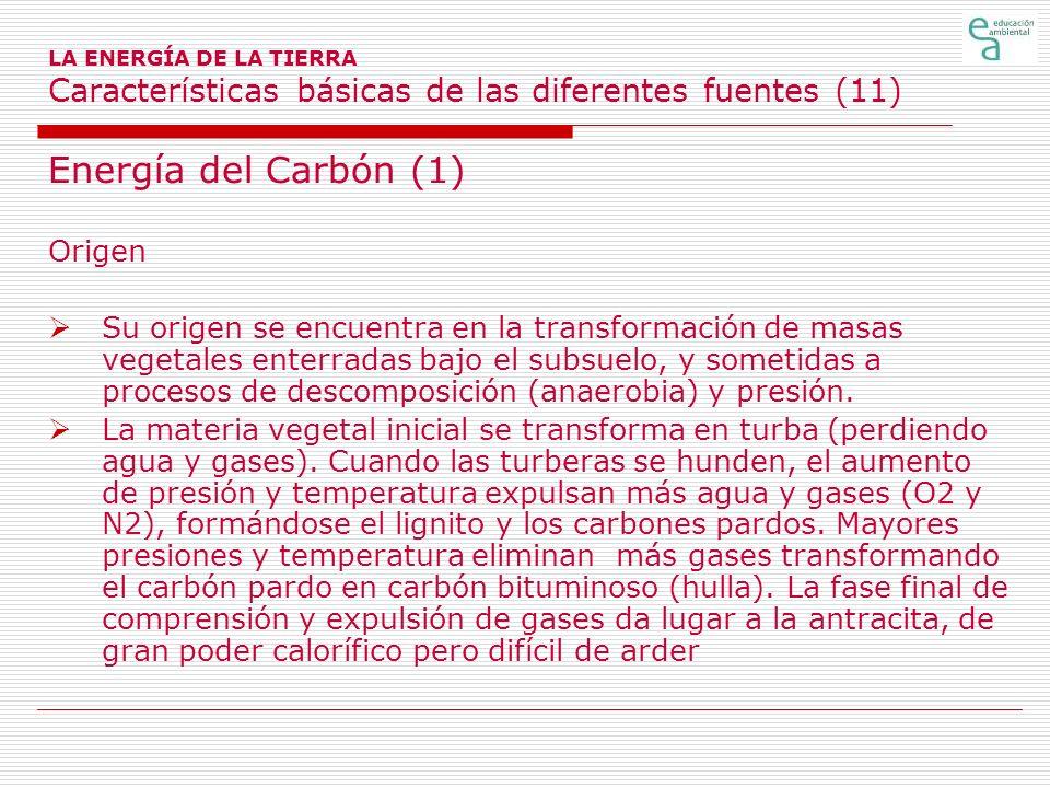LA ENERGÍA DE LA TIERRA Características básicas de las diferentes fuentes (11) Energía del Carbón (1) Origen Su origen se encuentra en la transformaci