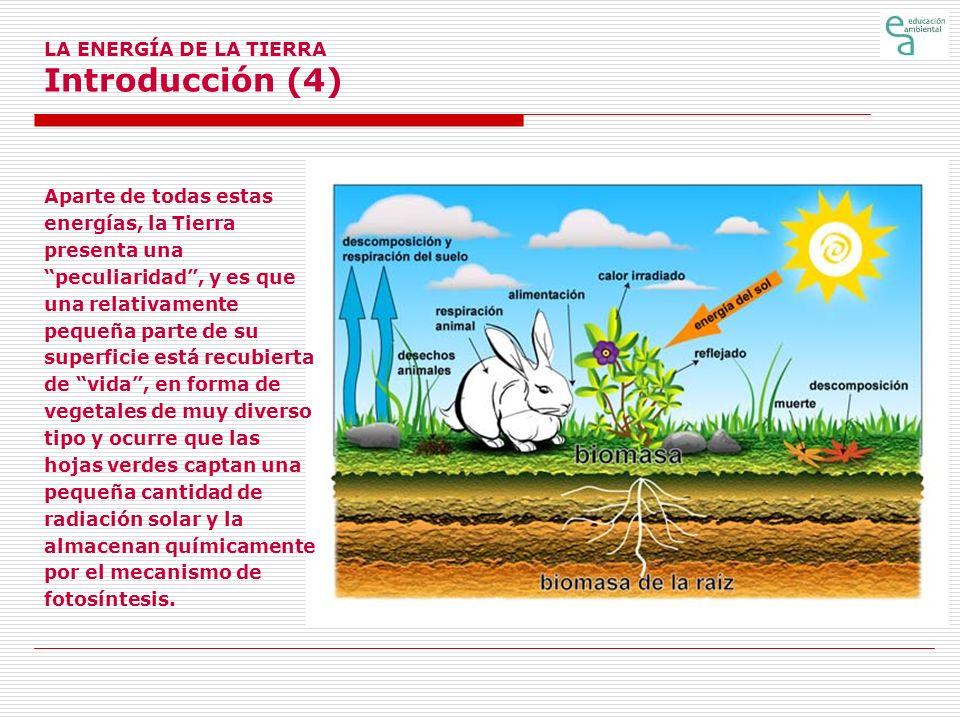 LA ENERGÍA DE LA TIERRA Introducción (5) Esta energía almacenada puede liberarse por oxidación (combustión) a un ritmo aproximadamente igual al de su almacenamiento.