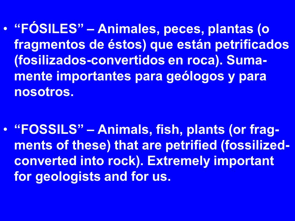 FÓSILES – Animales, peces, plantas (o fragmentos de éstos) que están petrificados (fosilizados-convertidos en roca). Suma- mente importantes para geól