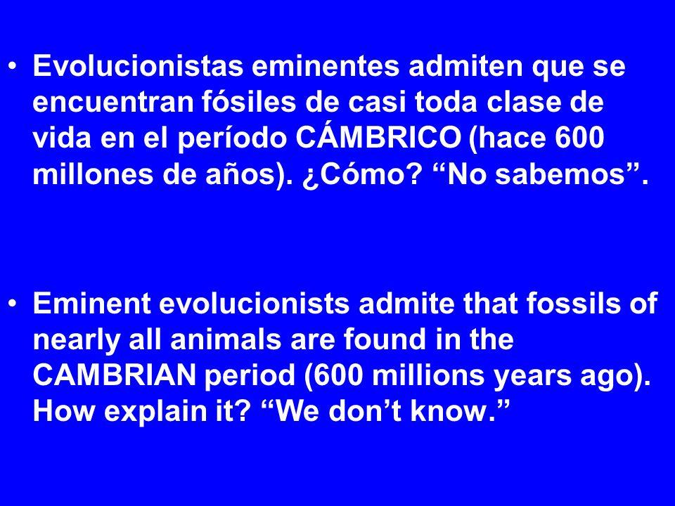 Evolucionistas eminentes admiten que se encuentran fósiles de casi toda clase de vida en el período CÁMBRICO (hace 600 millones de años).