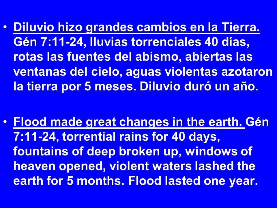 Diluvio hizo grandes cambios en la Tierra. Gén 7:11-24, lluvias torrenciales 40 días, rotas las fuentes del abismo, abiertas las ventanas del cielo, a