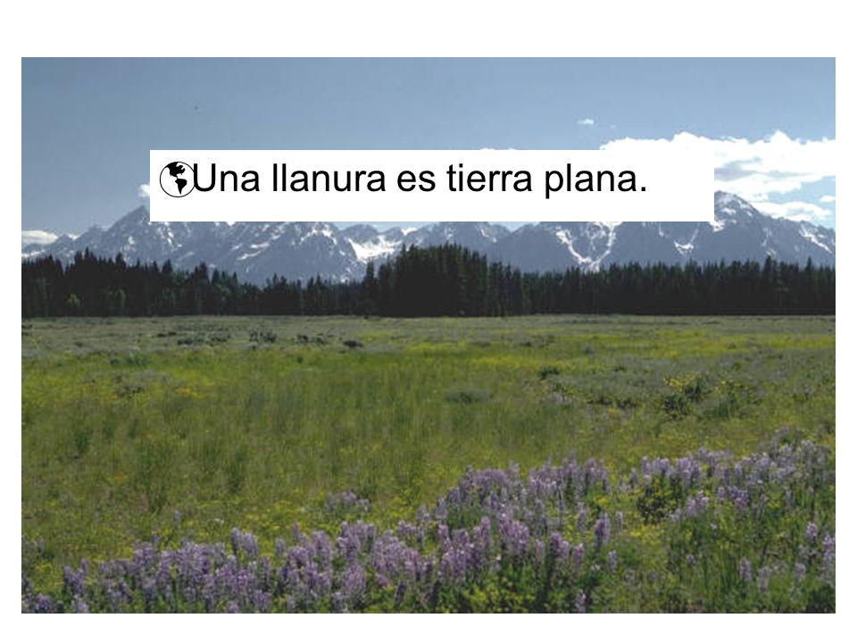 Una llanura es tierra plana.