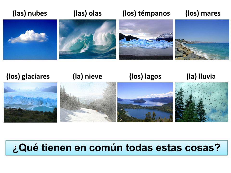 ¿Qué tienen en común todas estas cosas? (las) nubes(las) olas(los) témpanos(los) mares (los) glaciares(la) nieve(los) lagos(la) lluvia