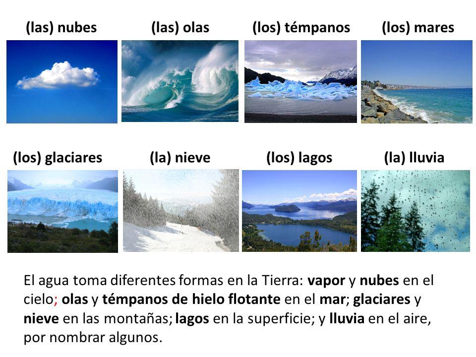 El agua toma diferentes formas en la Tierra: vapor y nubes en el cielo; olas y témpanos de hielo flotante en el mar; glaciares y nieve en las montañas