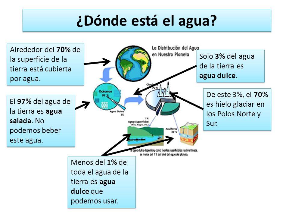 ¿Dónde está el agua? Alrededor del 70% de la superficie de la tierra está cubierta por agua. El 97% del agua de la tierra es agua salada. No podemos b
