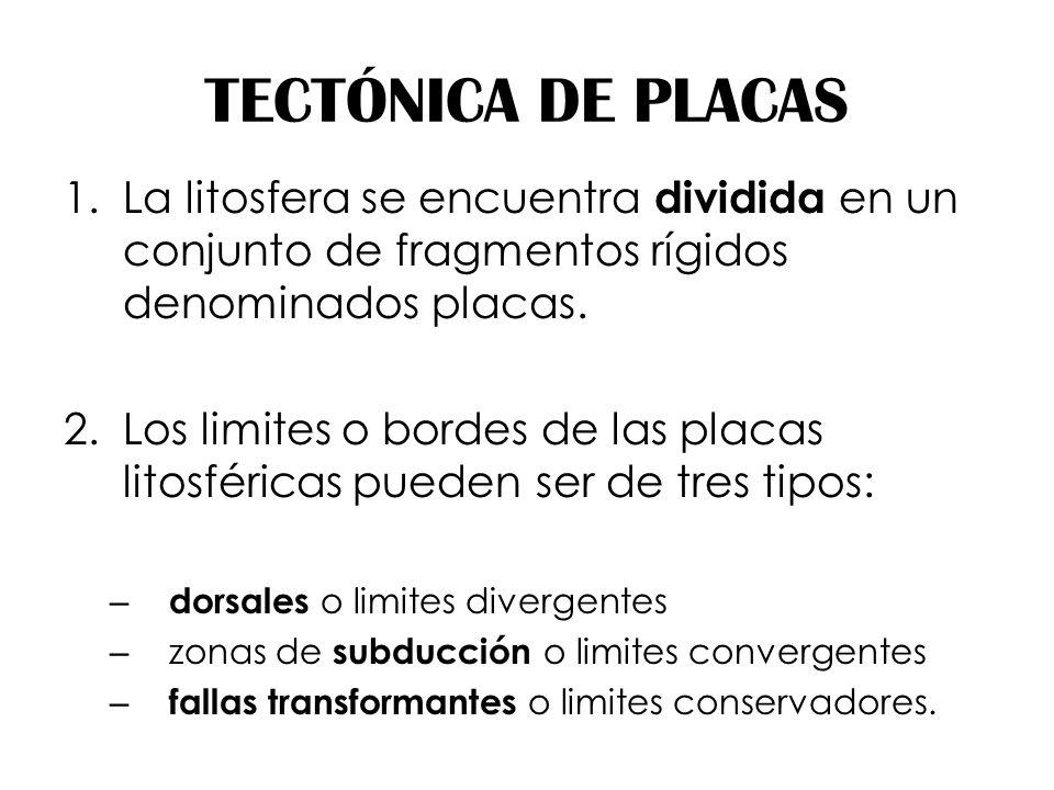 TECTÓNICA DE PLACAS 1.La litosfera se encuentra dividida en un conjunto de fragmentos rígidos denominados placas. 2.Los limites o bordes de las placas