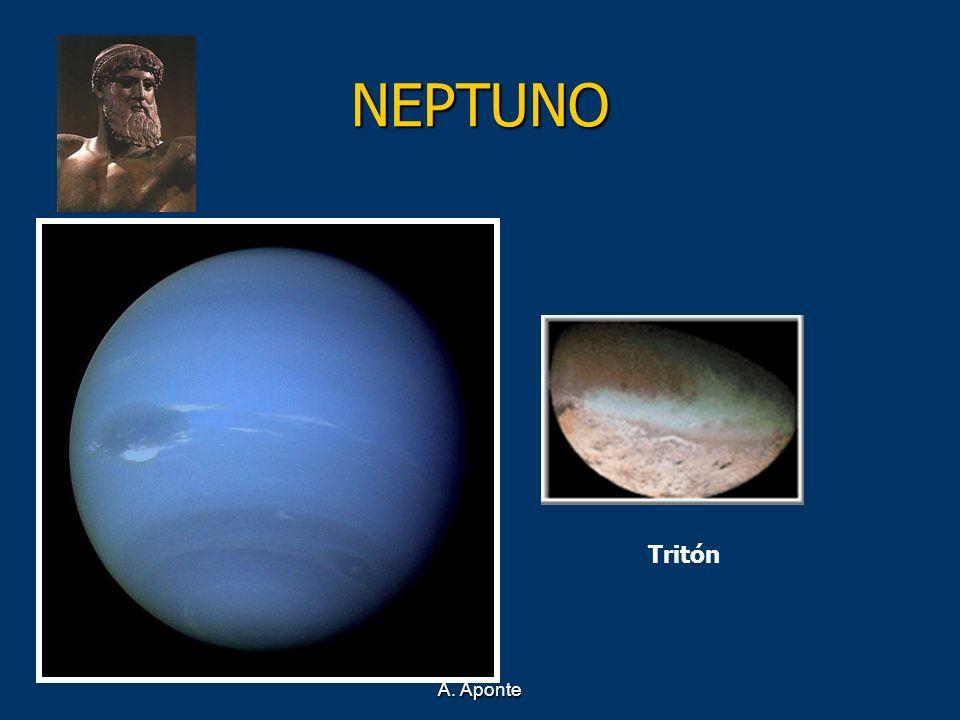 A. Aponte NEPTUNO Tritón
