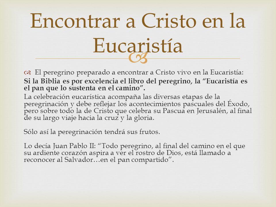 El peregrino preparado a encontrar a Cristo vivo en la Eucaristía: Si la Biblia es por excelencia el libro del peregrino, la Eucaristía es el pan que lo sustenta en el camino.