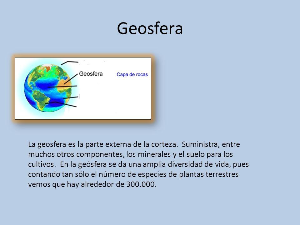 Geosfera La geosfera es la parte externa de la corteza. Suministra, entre muchos otros componentes, los minerales y el suelo para los cultivos. En la