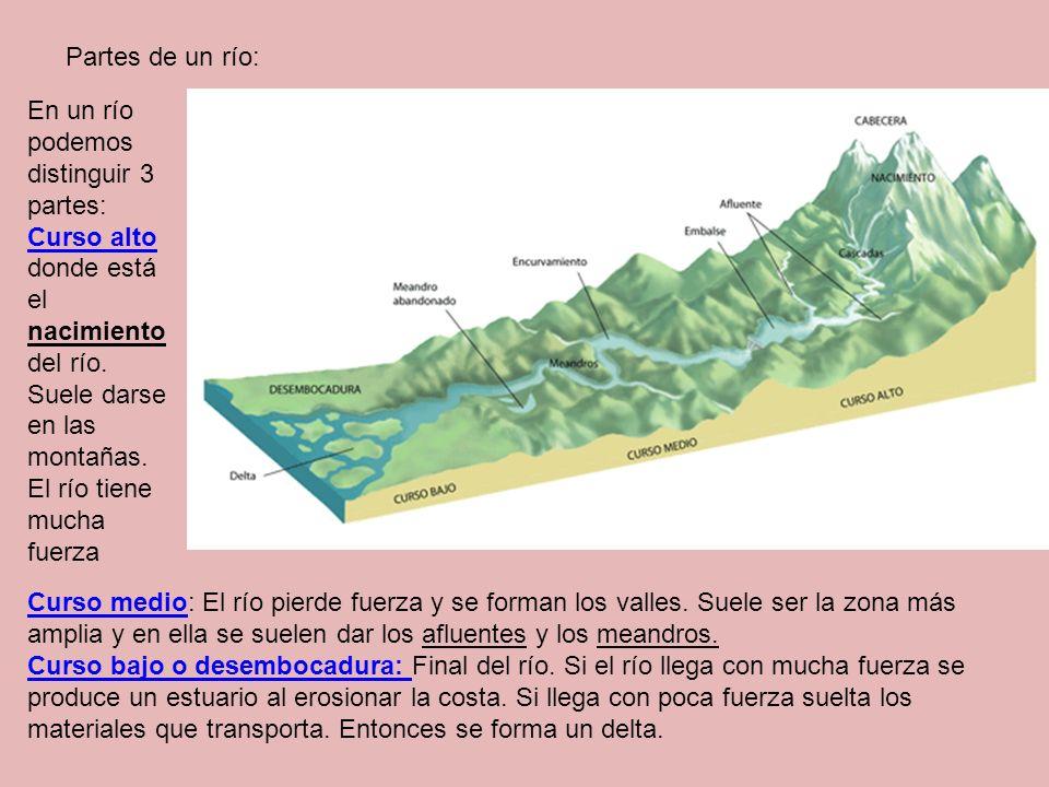 Partes de un río: En un río podemos distinguir 3 partes: Curso alto Curso alto donde está el nacimiento del río. Suele darse en las montañas. El río t