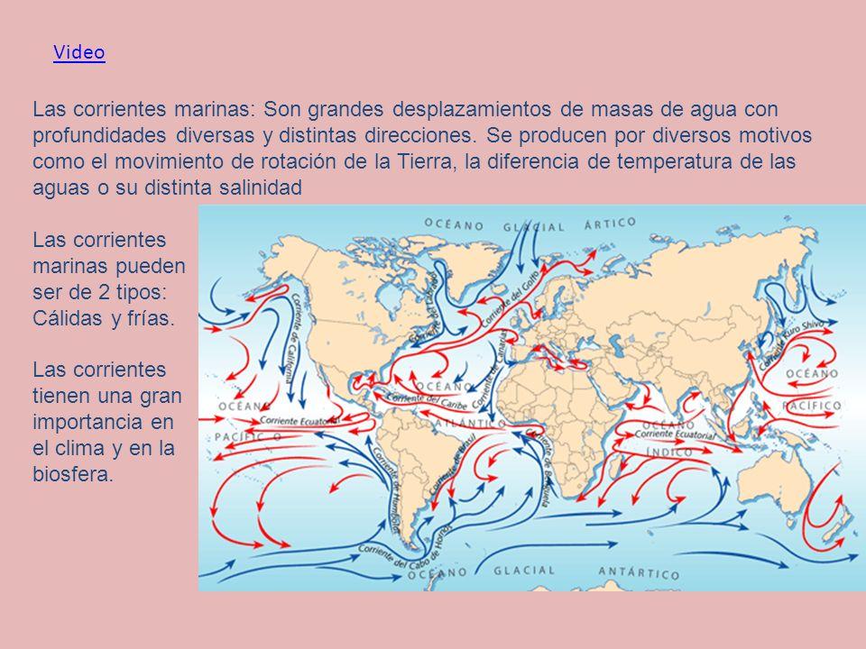 Las corrientes marinas: Son grandes desplazamientos de masas de agua con profundidades diversas y distintas direcciones. Se producen por diversos moti