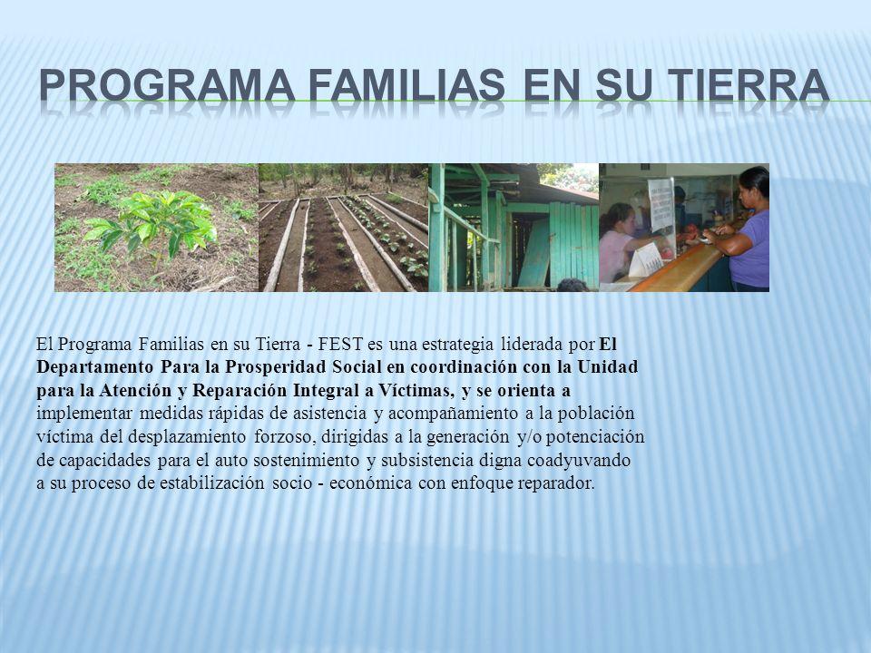 El Programa Familias en su Tierra - FEST es una estrategia liderada por El Departamento Para la Prosperidad Social en coordinación con la Unidad para