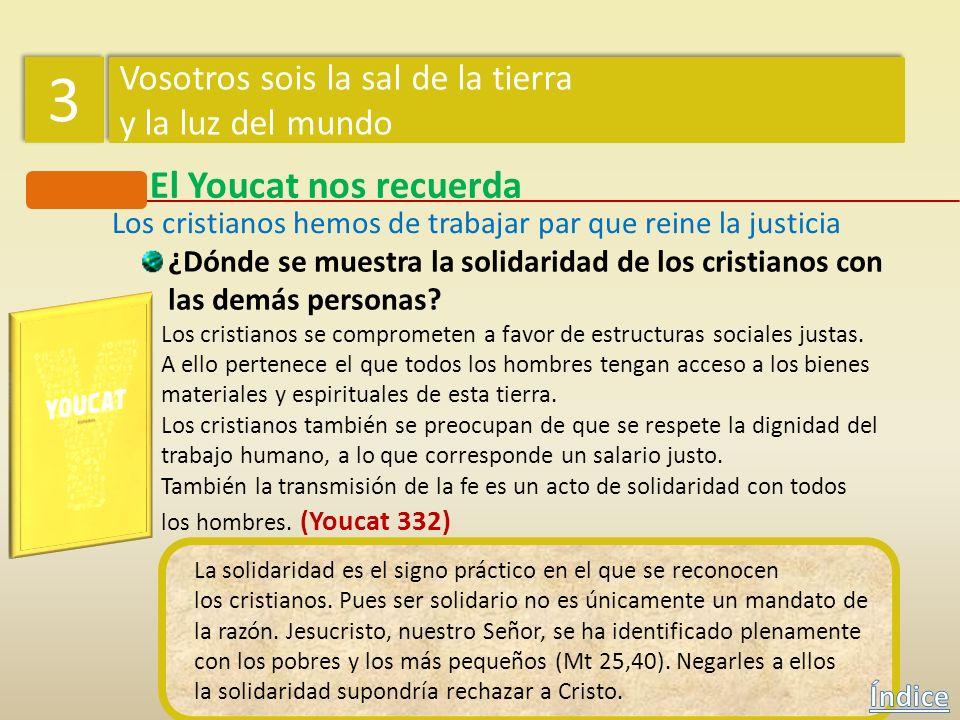 El Youcat nos recuerda ¿En qué consiste la vocación de los fieles cristianos? Los fieles cristianos son enviados para comprometerse en la sociedad, pa