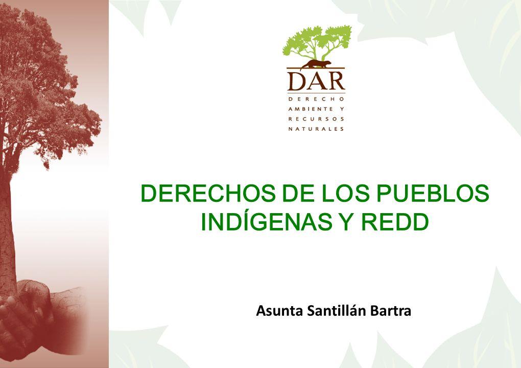 Asunta Santillán Bartra DERECHOS DE LOS PUEBLOS INDÍGENAS Y REDD