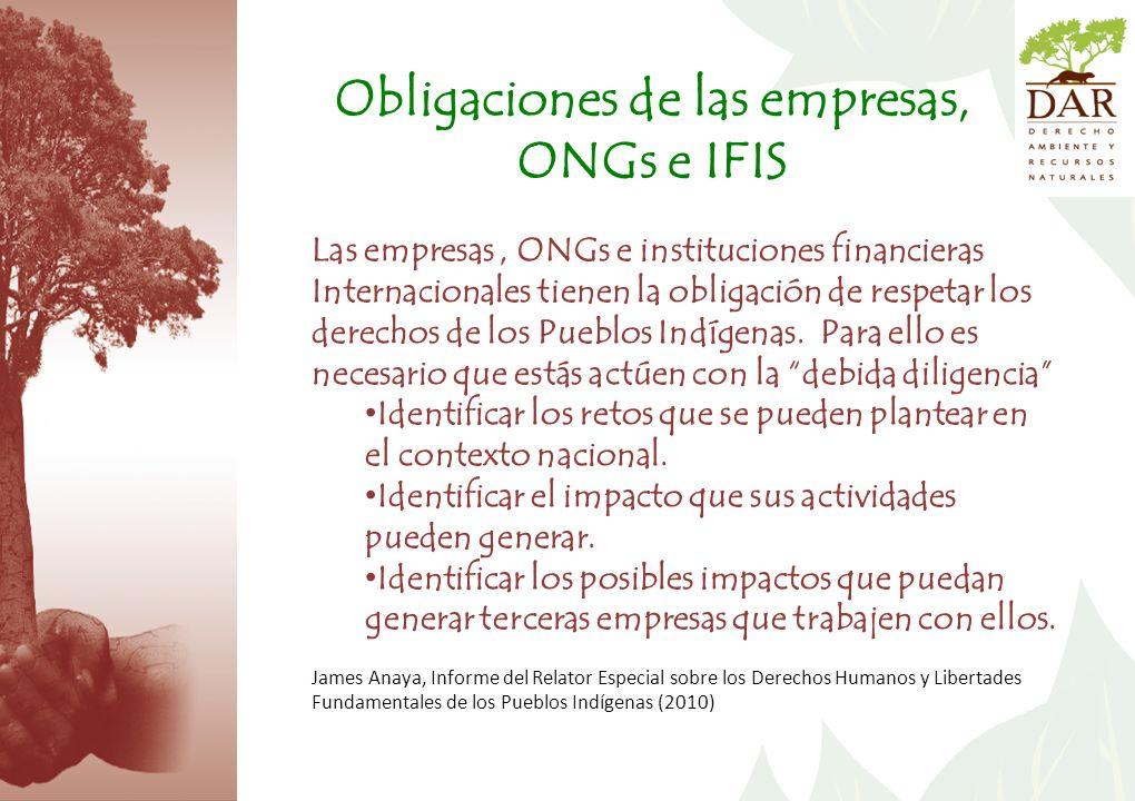 Obligaciones de las empresas, ONGs e IFIS Las empresas, ONGs e instituciones financieras Internacionales tienen la obligación de respetar los derechos de los Pueblos Indígenas.