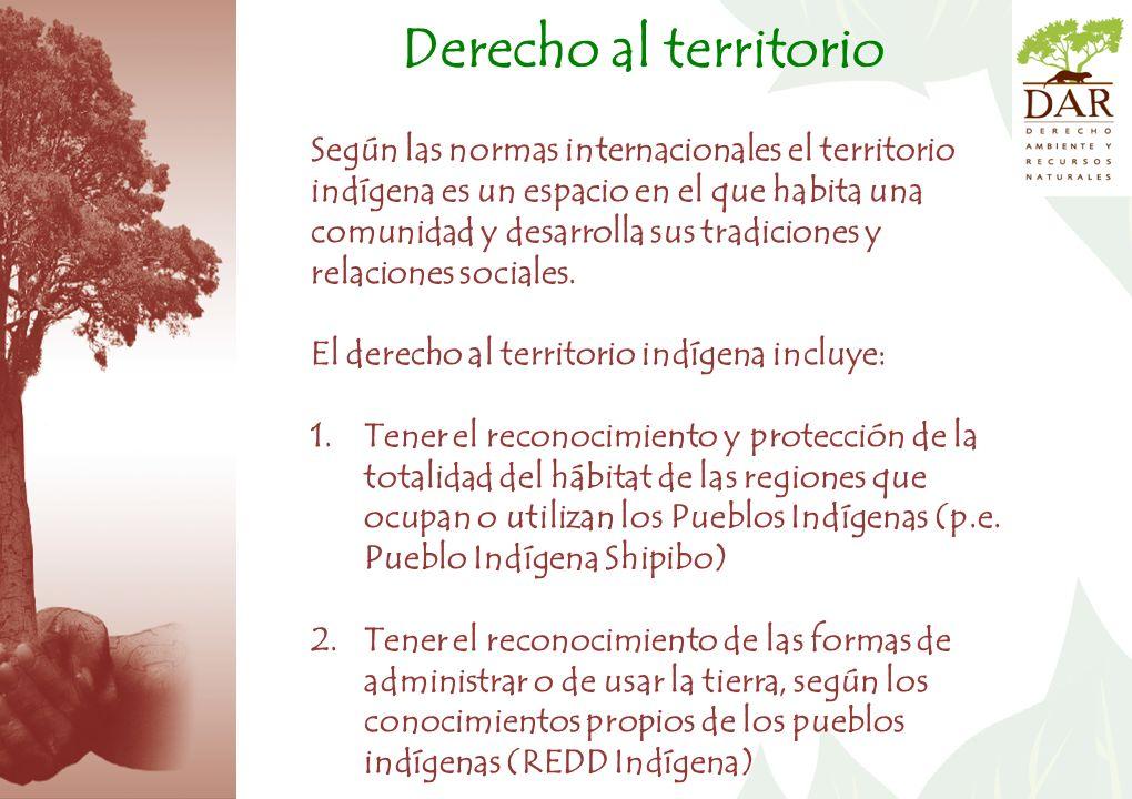 Según las normas internacionales el territorio indígena es un espacio en el que habita una comunidad y desarrolla sus tradiciones y relaciones sociales.