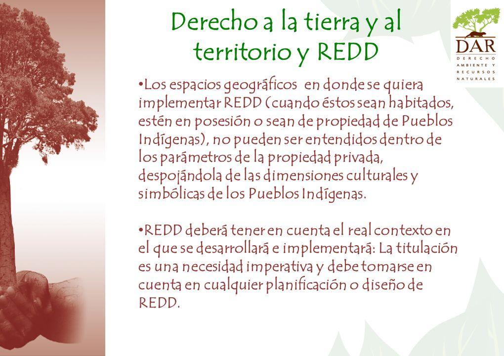Los espacios geográficos en donde se quiera implementar REDD (cuando éstos sean habitados, estén en posesión o sean de propiedad de Pueblos Indígenas), no pueden ser entendidos dentro de los parámetros de la propiedad privada, despojándola de las dimensiones culturales y simbólicas de los Pueblos Indígenas.