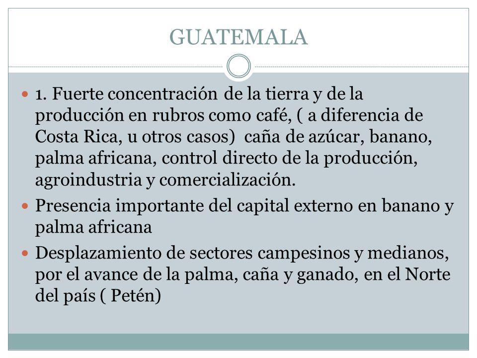 GUATEMALA 1. Fuerte concentración de la tierra y de la producción en rubros como café, ( a diferencia de Costa Rica, u otros casos) caña de azúcar, ba