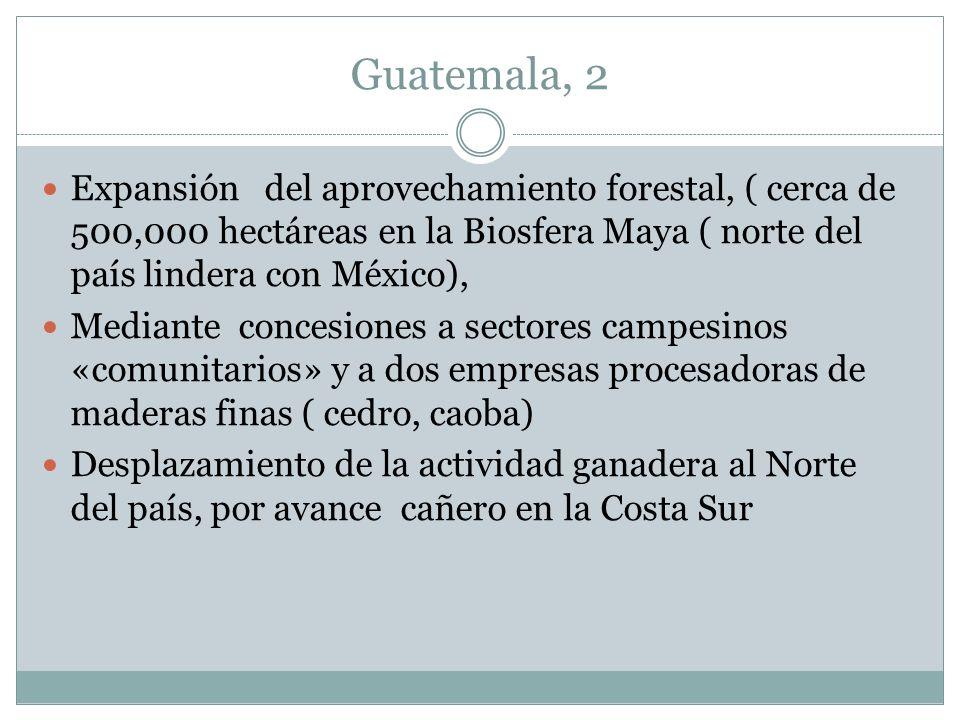 Guatemala, 2 Expansión del aprovechamiento forestal, ( cerca de 500,000 hectáreas en la Biosfera Maya ( norte del país lindera con México), Mediante c