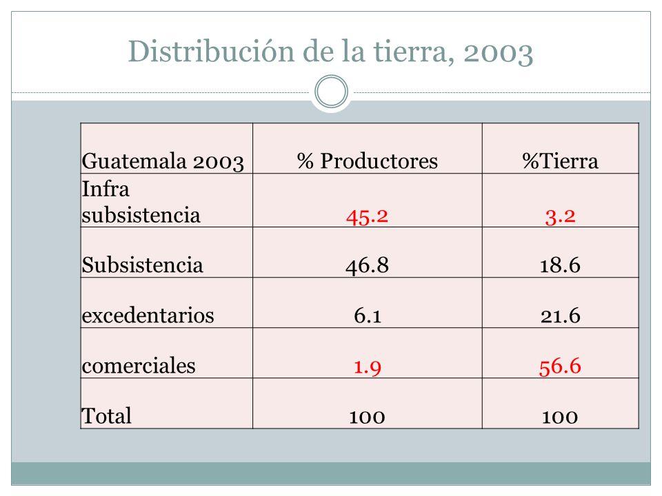 Distribución de la tierra, 2003 Guatemala 2003% Productores%Tierra Infra subsistencia45.23.2 Subsistencia46.818.6 excedentarios6.121.6 comerciales1.95