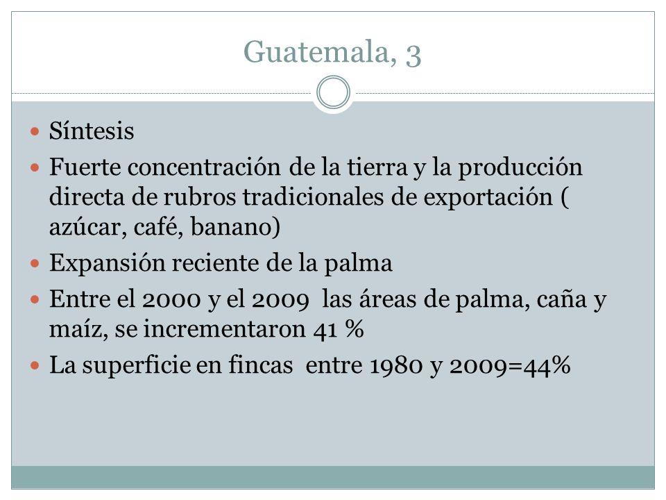 Guatemala, 3 Síntesis Fuerte concentración de la tierra y la producción directa de rubros tradicionales de exportación ( azúcar, café, banano) Expansi