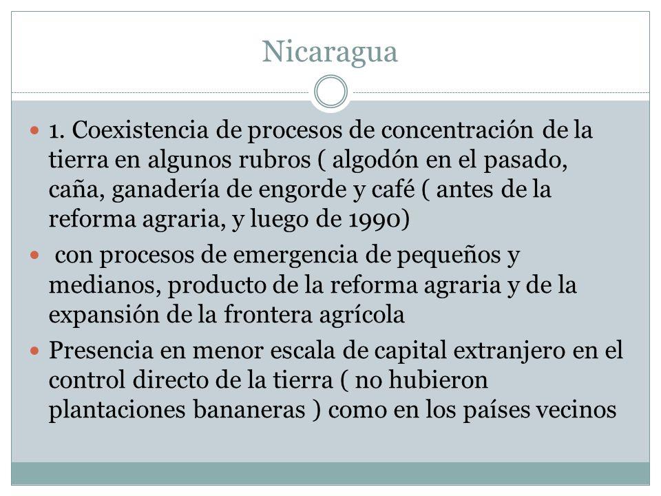 Nicaragua 1. Coexistencia de procesos de concentración de la tierra en algunos rubros ( algodón en el pasado, caña, ganadería de engorde y café ( ante