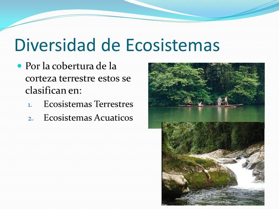 Diversidad de Ecosistemas Por la cobertura de la corteza terrestre estos se clasifican en: 1. Ecosistemas Terrestres 2. Ecosistemas Acuaticos