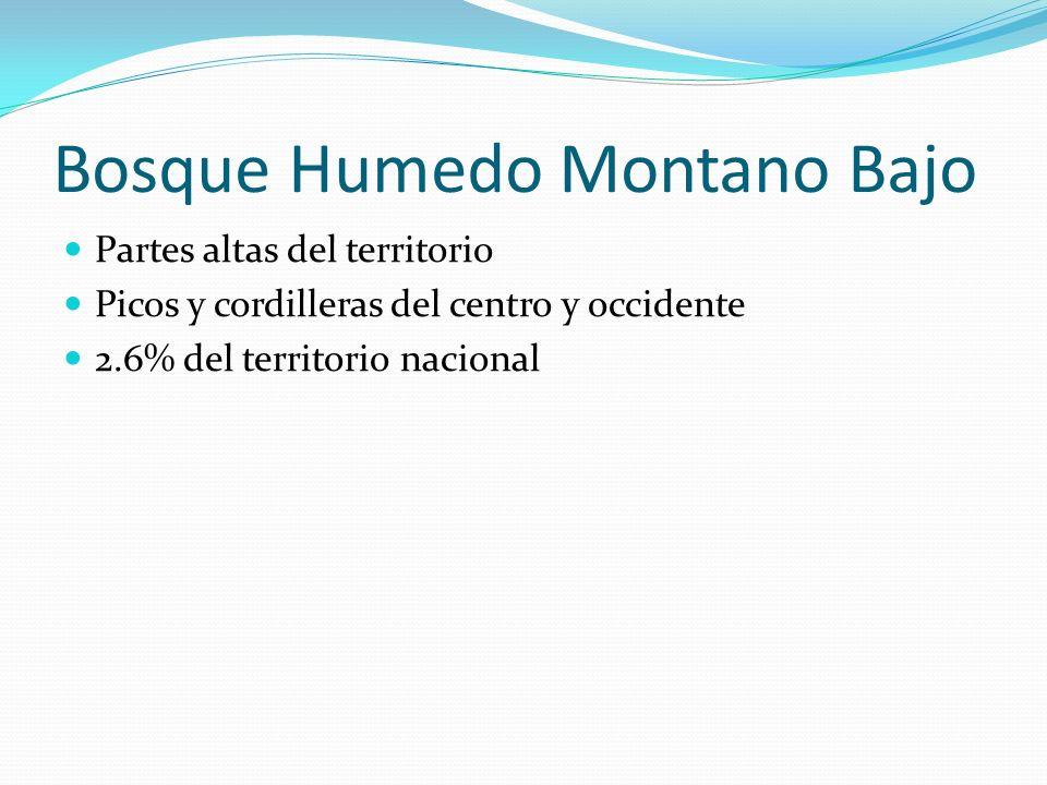 Bosque Humedo Montano Bajo Partes altas del territorio Picos y cordilleras del centro y occidente 2.6% del territorio nacional