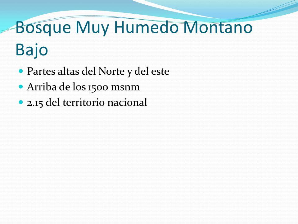 Bosque Muy Humedo Montano Bajo Partes altas del Norte y del este Arriba de los 1500 msnm 2.15 del territorio nacional
