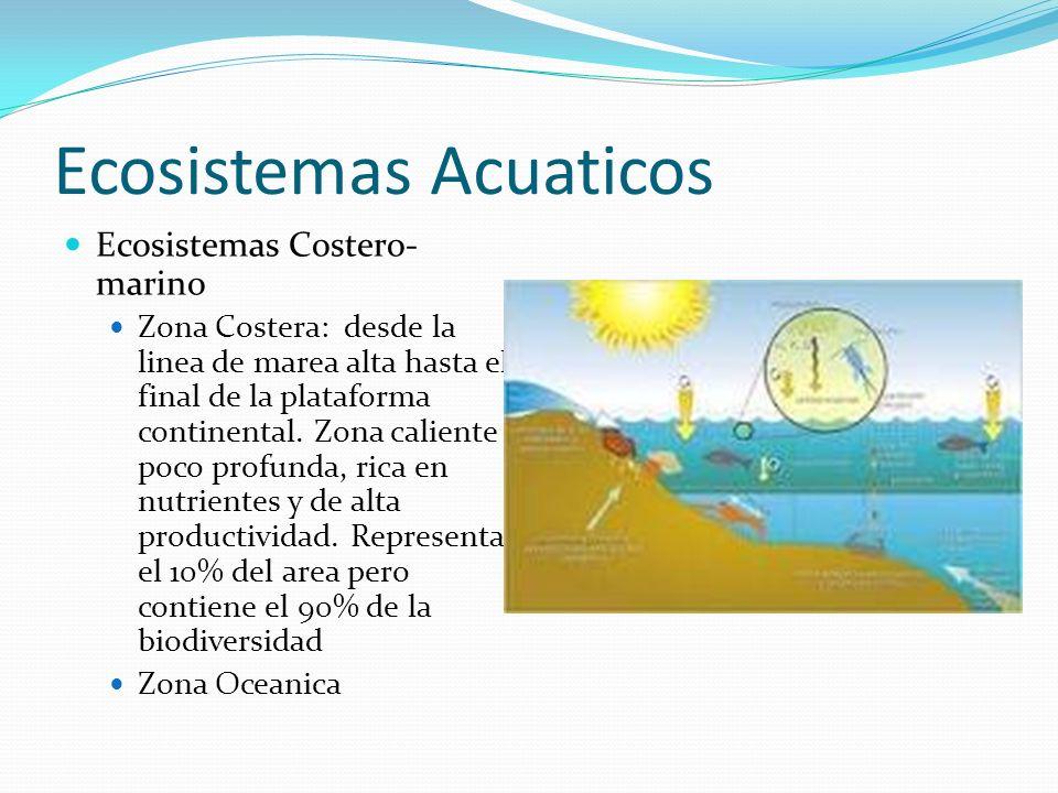 Ecosistemas Acuaticos Ecosistemas Costero- marino Zona Costera: desde la linea de marea alta hasta el final de la plataforma continental. Zona calient