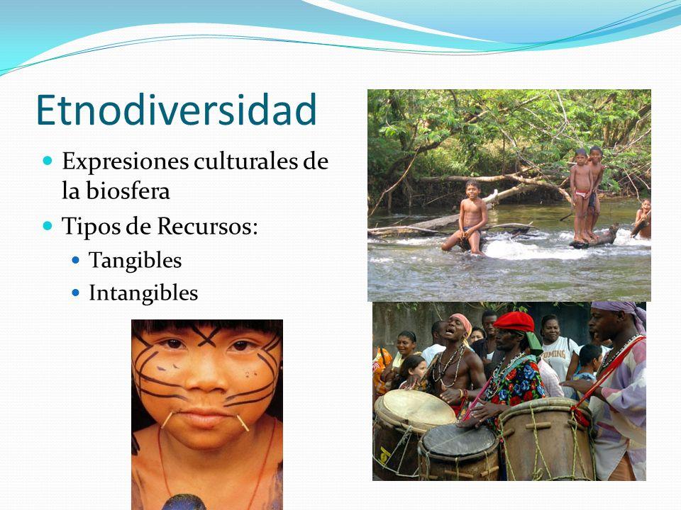 Etnodiversidad Expresiones culturales de la biosfera Tipos de Recursos: Tangibles Intangibles