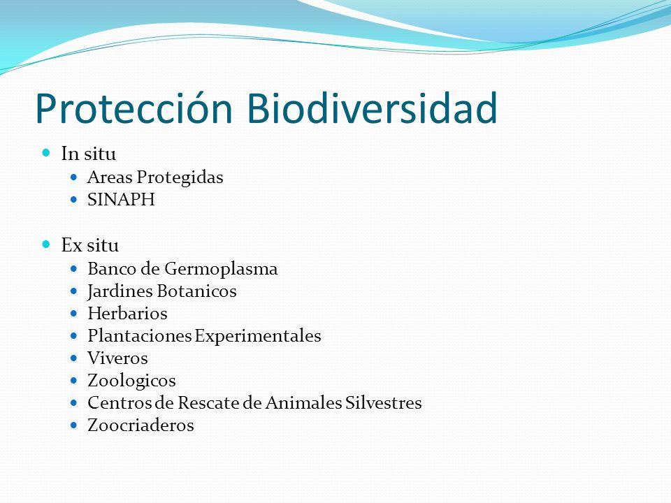 Protección Biodiversidad In situ Areas Protegidas SINAPH Ex situ Banco de Germoplasma Jardines Botanicos Herbarios Plantaciones Experimentales Viveros