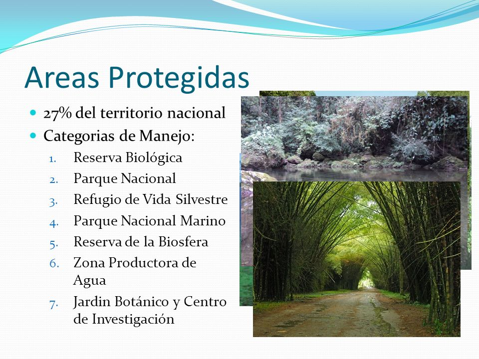 Areas Protegidas 27% del territorio nacional Categorias de Manejo: 1.