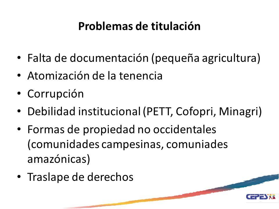 Problemas de titulación Falta de documentación (pequeña agricultura) Atomización de la tenencia Corrupción Debilidad institucional (PETT, Cofopri, Min