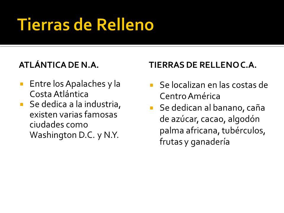 ATLÁNTICA DE N.A.