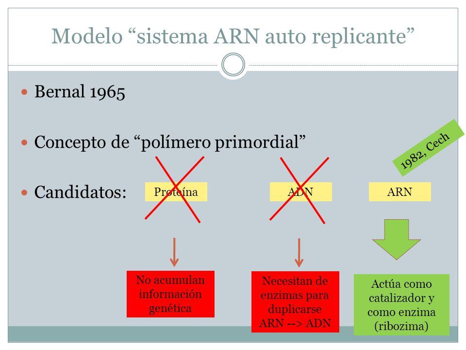 Modelo sistema ARN auto replicante Bernal 1965 Concepto de polímero primordial Candidatos: ProteínaADNARN No acumulan información genética Necesitan d