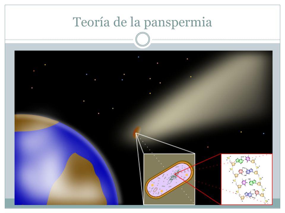 Pros de la teoría Meteorito ALH84001 que según algunos sospechan contiene bacterias fosilizadas.