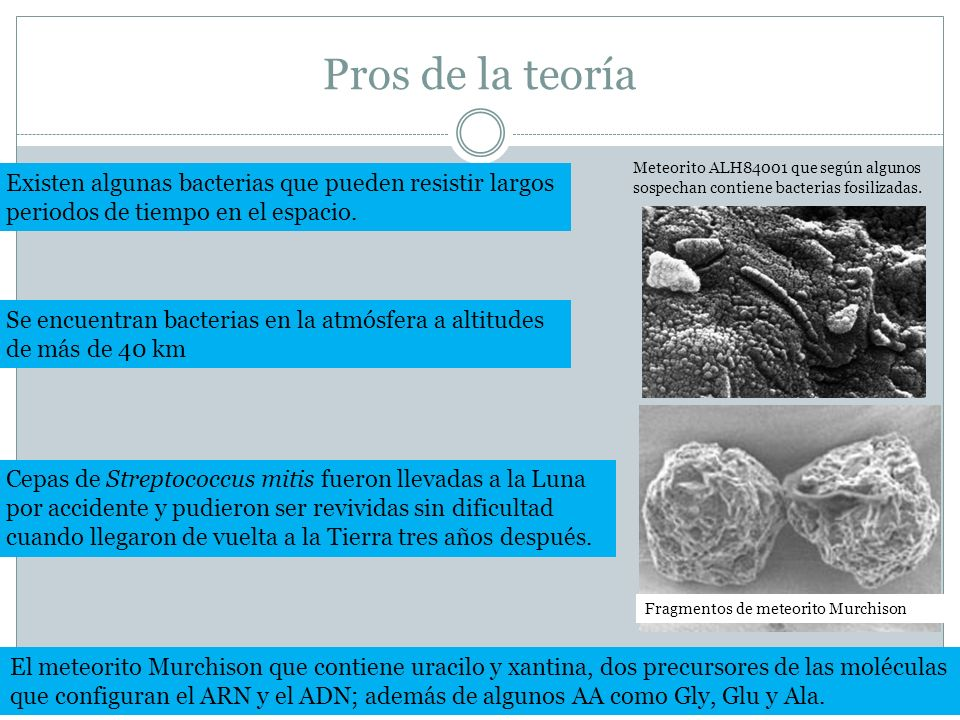 Pros de la teoría Meteorito ALH84001 que según algunos sospechan contiene bacterias fosilizadas. Existen algunas bacterias que pueden resistir largos